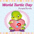 Celebrate World Turtle Day!