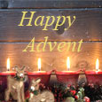 Holy Day Of Advent...