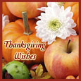 Thanksgiving Greetings!