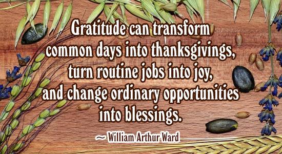 Gratitude Can Transform...