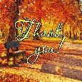Thank You Falling Leaves...
