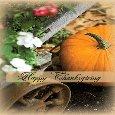 Thanksgiving Warm Greetings.