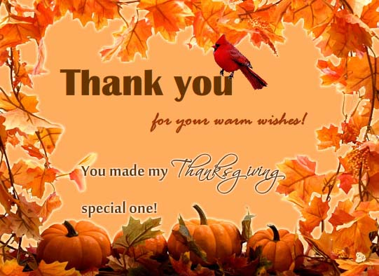thanks a lot  free thank you ecards  greeting cards