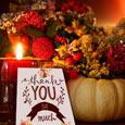 You Made My Thanksgiving Joyful!