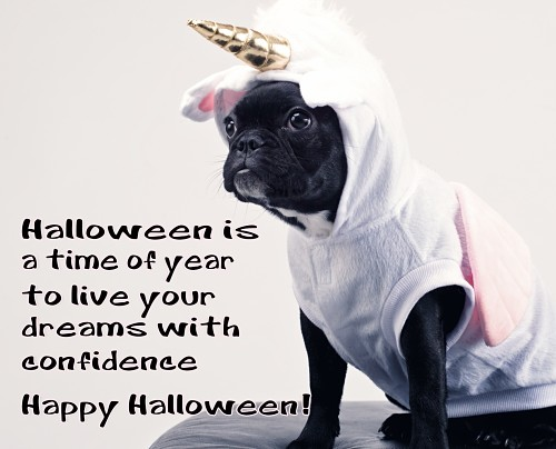 Live Your Dreams On Halloween.
