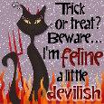"Beware, I'm ""Feline"" Devilish."