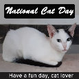 National Cat Day, Cat Lover...