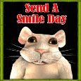 Smiling Mouse...