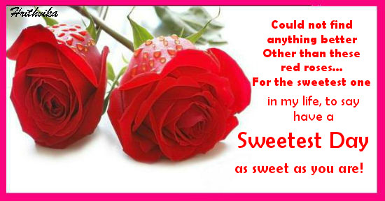 A Special Red Rose...
