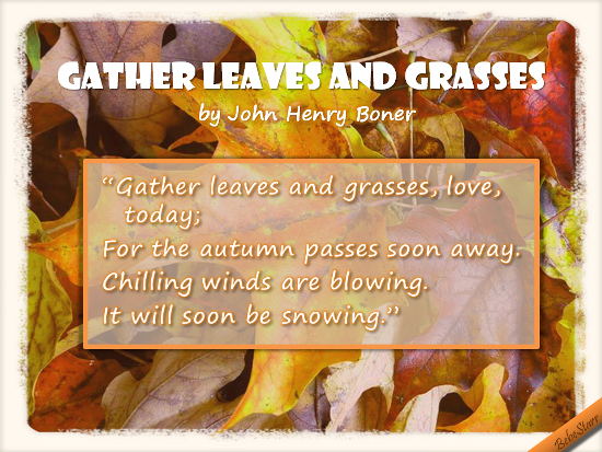 Gather Leaves And Grasses.