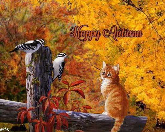 Send Autumn Card!