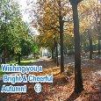 A Bright & Cheerful Autumn...