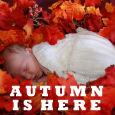 Sweet Autumn.