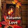 Fall In Love!