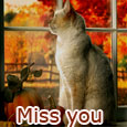 Miss You So Much...