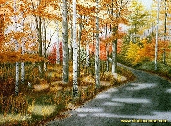 A Sunny Autumn Day.