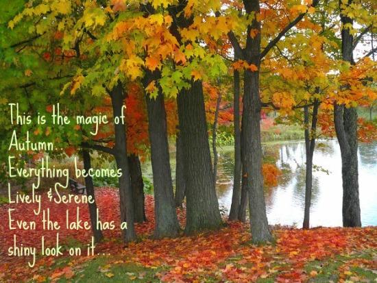 Magic & Essence Of Autumn.