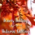 Leaves Falling.