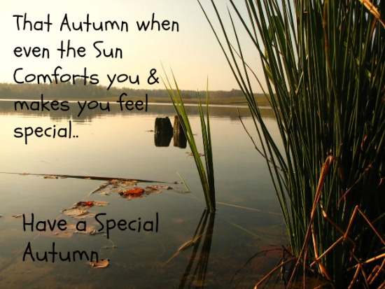 A Special Autumn..