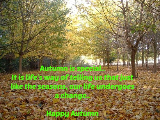 A Very Special Autumn...