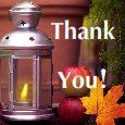 Better Season To Give Thanks!