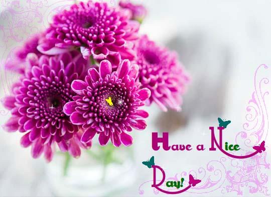 Send September Flowers Ecard