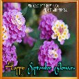 A Happy September Flowers Month.