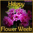 Happy Flower Week Especially For You.