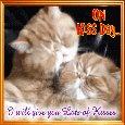 Cat Kisser!