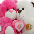 Cuddly Teddy!