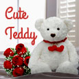 A Cute Teddy For You.