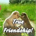 Thanks For Your True Friendship!