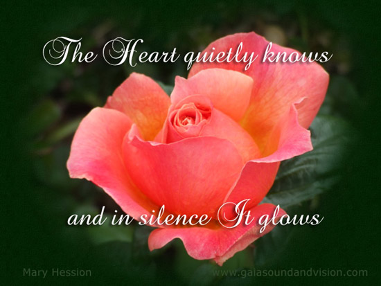 The Heart Quietly Knows.