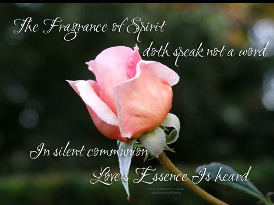 The Fragrance Of Spirit.