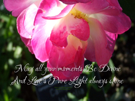 May All Your Moments Be Divine.