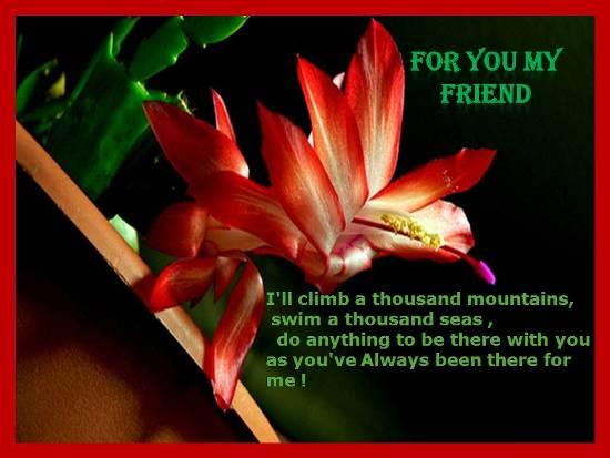 Friendship Forever.