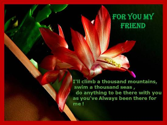 Heartfelt Sentiments For  Dear Friend.