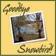 Goodbye Snowbird!