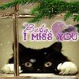 I Miss You Ecard.
