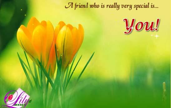 Send Friendship Card!