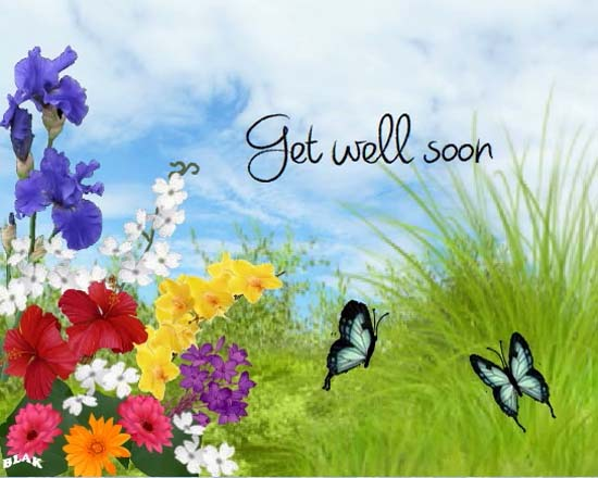 everyday get well soon cards  free everyday get well soon wishes
