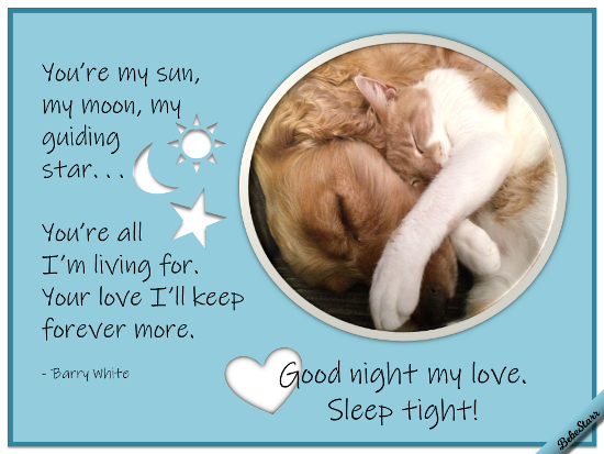 Good Night, Sleep Tight!
