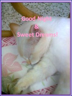 Good Night & Sweet Dreams.