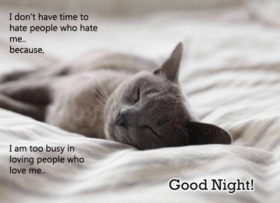 Cute Good Night!