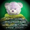 "A ""Beary"" Good Night!"
