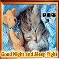 A Cute Good Night Card.