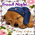 Good Night And Sleep Tight Ecard.