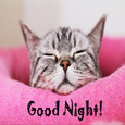 A Cute Good Night Card For You.