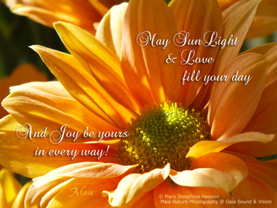 May Your Day Be Filled With Sunshine.