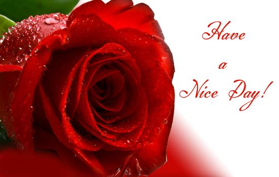 http://i.123g.us/c/gen_hvgtday/card/312409.jpg